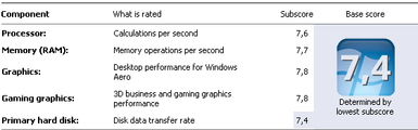 Windows Experiance Index.