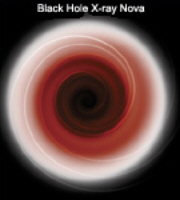 Black Holes: Part 1